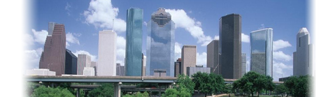 Houston Real Estate